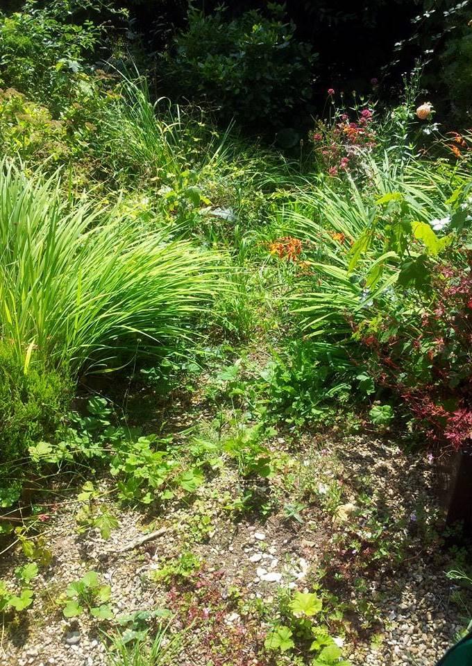 Garden Gravel 1
