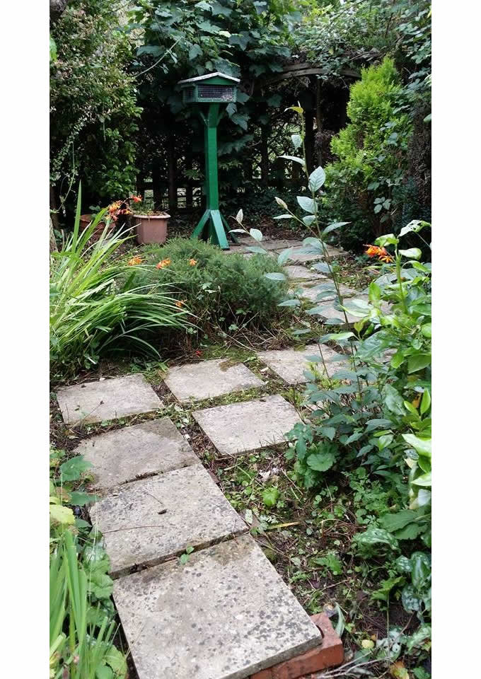 Garden Paving 2