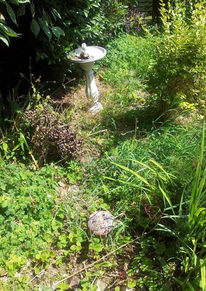Garden Sundial 1