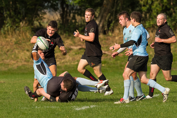 Andover Beat Favourites Fordingbridge