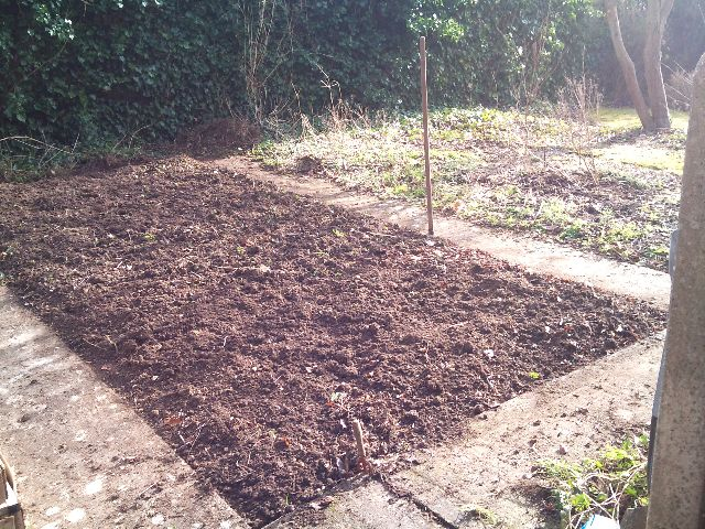 Andover Garden Share - After