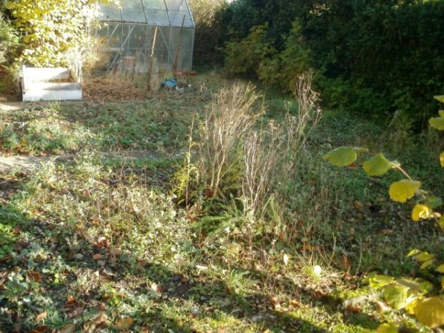 Andover Garden Share - Before