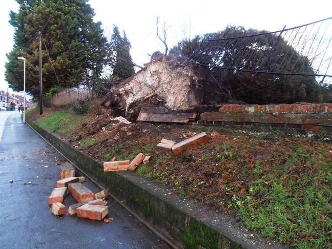 Fallen Tree in Vigo Road, Andover