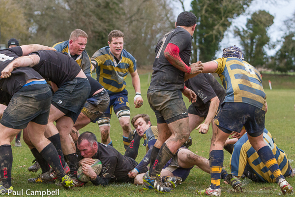 Isle of Wight v Andover RFC
