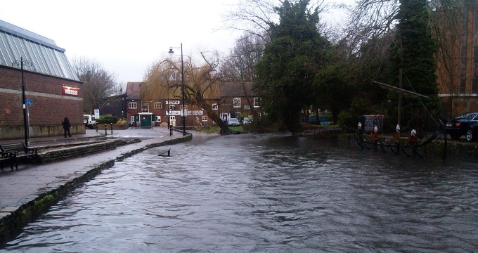 River Anton in Andover