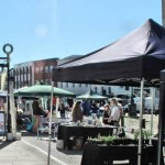 Festive Farmers' Market Comes to Town!