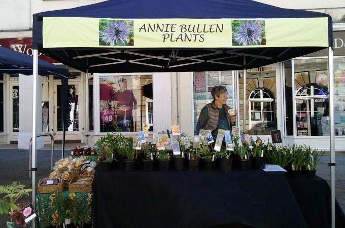 Annie Bullen Plants
