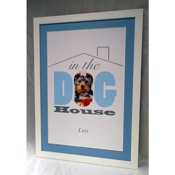 Pets Dog House