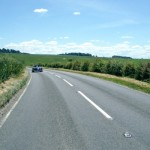 Protecting Roadside Verges of Ecological Importance